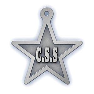 CSS - Pewter